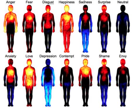emotionbodymap